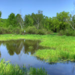wisconsin-hoffman-hills-state-recreation-area-landscape-and-pond